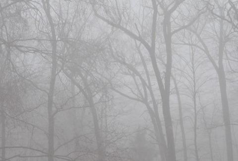 霧a1180_007018