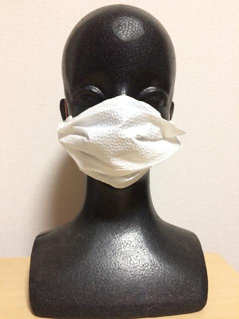 キッチンペーパーを使った簡易マスクの作り方
