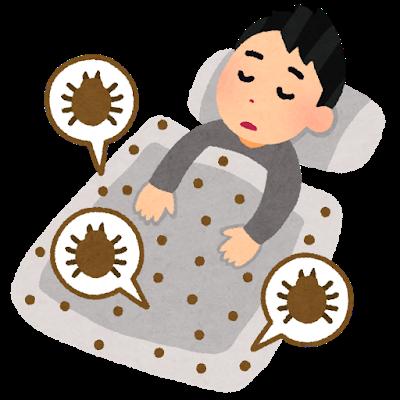 ハウスダストアレルギーの第一原因とは?