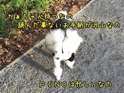 20170626_154630 (2)