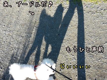 20170718_153607 (2)