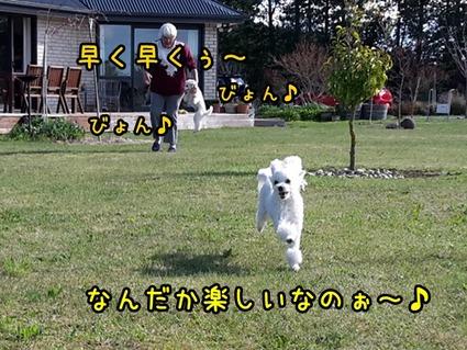 20170916_145536 (2)