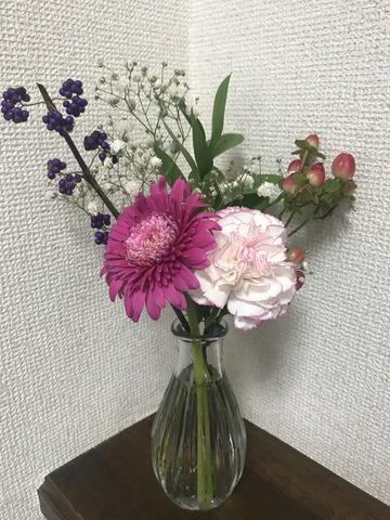 IMG_9495[1]