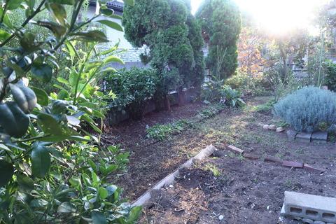 20201002作業後の庭2