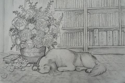チャオと花