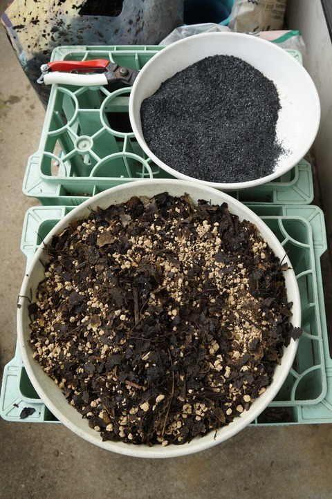 用土と籾燻炭
