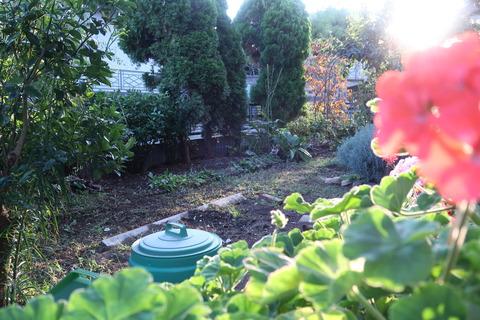 20201002作業後の庭3