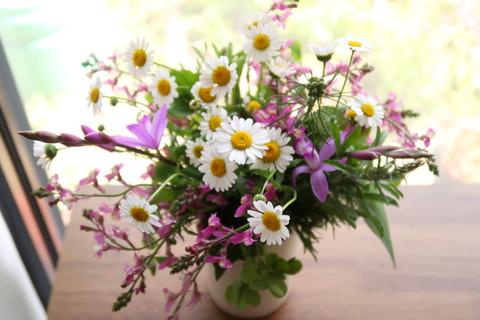 20210501春の花