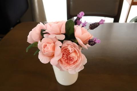 クイーンオブスエーデン切り花
