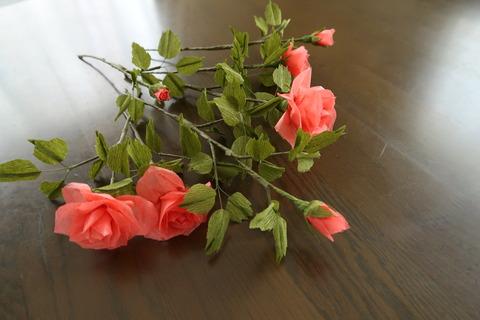 赤ちり紙バラ全体の様子花側