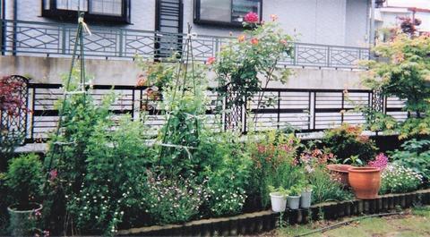 199904花壇