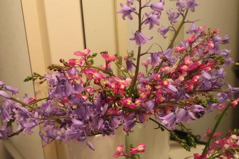 20210417リナリアの生け花