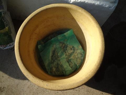 鉢底にごろ土かハッポースチロールを砕いたもの