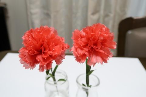 花びら10枚と8枚