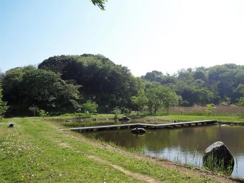 4月22日森林公園