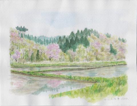 里山の春の風景