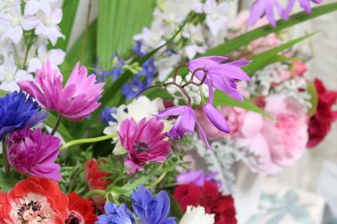 20210518庭の花