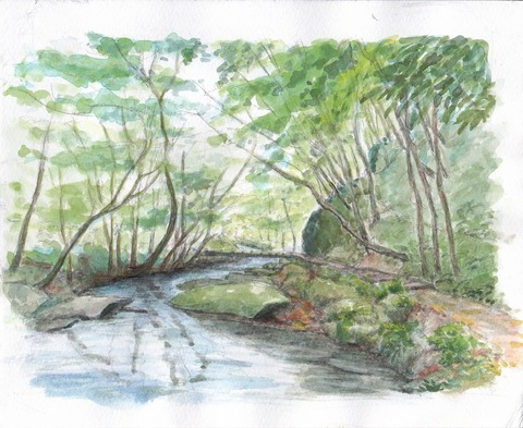 9月の滝川渓谷