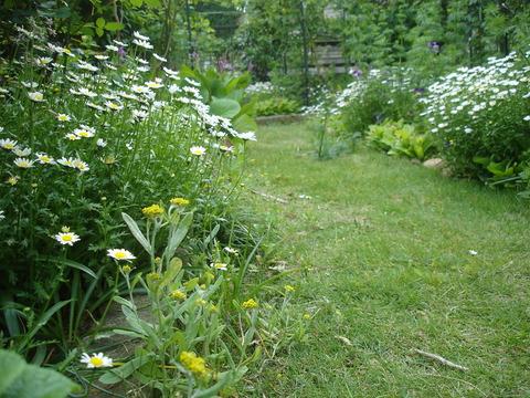 20100518南の花壇