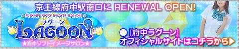 lg_renewal
