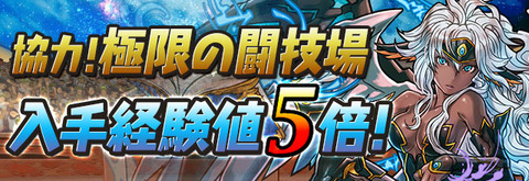 multi_togijyo_rank5