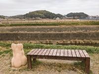 �矢勝川(権現山みえる) ごんとベンチ