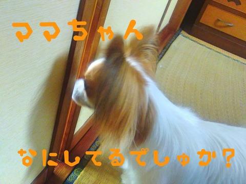 Fotor_152826864089348