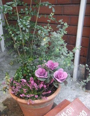 メインの花をチェンジ