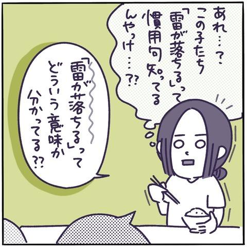 IMG_4223
