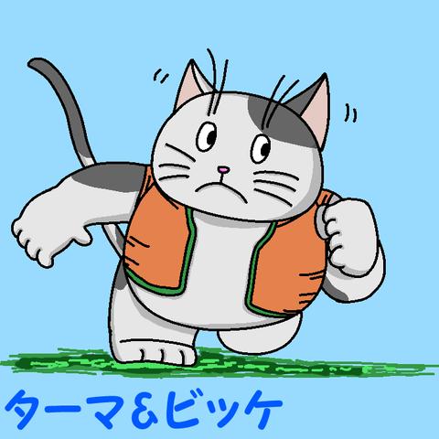 走る猫png