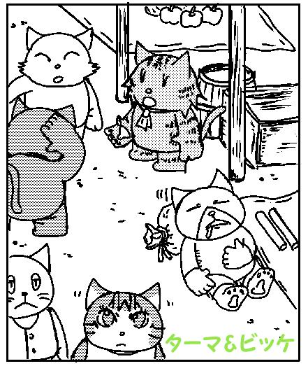 猫騒がしい商店png