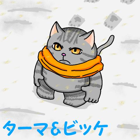 冬寒そう猫png