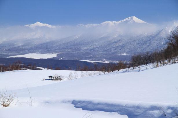 【悲報】北国在住の車持ってないトレーナーは冬どうすればええんや… ←絶望しかない \(^o^)/wwwwwwwwwwwwwwww