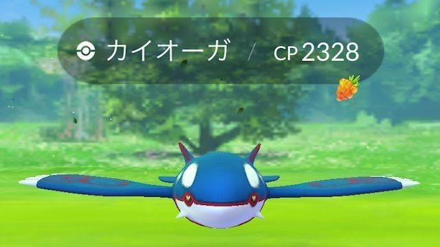 【ポケモンGO】新規勢はグラカイ全力!対策ポケモンは何がいい?【伝説レイド】