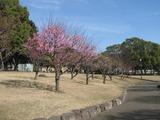南立石公園4