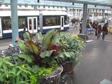ジュネーヴ駅