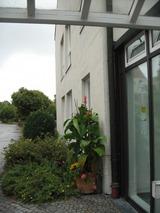 診療所の玄関