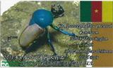 bluecp-card