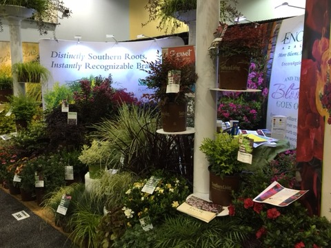 Cultivate15 image4