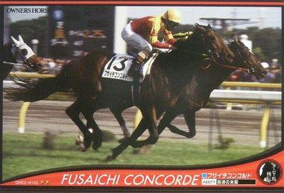 item_fusaichikonkorudo_1