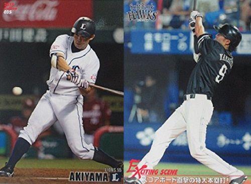 L_055_akiyama_H_009_yanagita_1