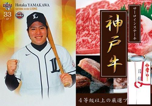 L_033_yamakawa_koubegyuu_1