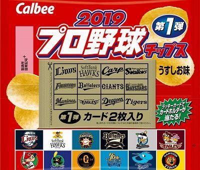 item_puroyakyuutippusu2019_1