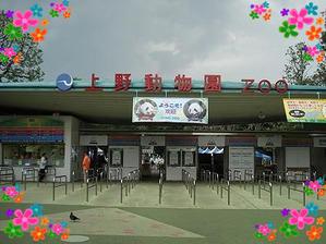 上野動物園★