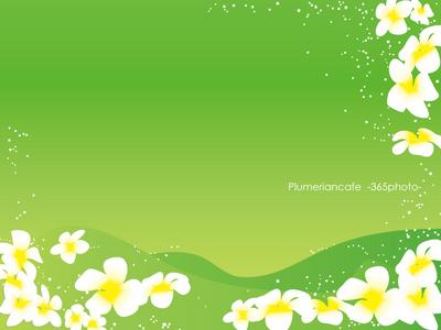 プルメリア壁紙 緑