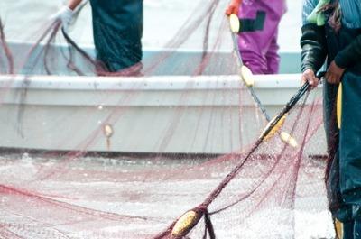 【驚愕】国税庁が出した漁師の年収wwwww