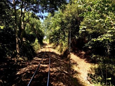 【画像】大分のローカル単線、凄い景色の中を走ってる件wwww