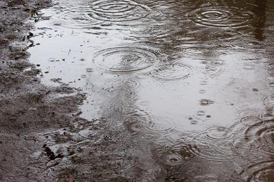 【能力者】田舎に住んでる人「……雨の匂いがする」