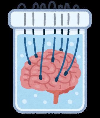 SF_brain.png