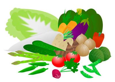 vegitable02-002